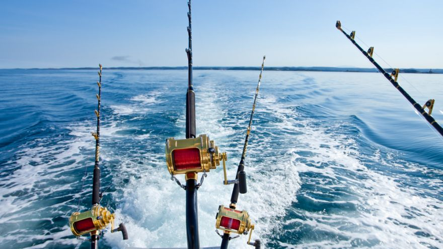 Taking up fishing? Here's what you should know first