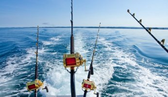 Inshore or Offshore Fishing? Understand the differences