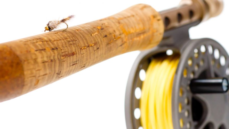 Mini Fishing Rod Rigs Reviews