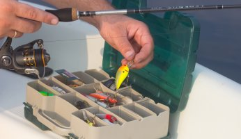 Fishing Lure Basics: What You Need to Know in 2021