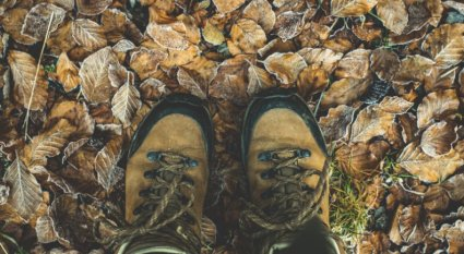 How to Pick Shoes for Hiking 2019 GearWeAre