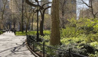 Urban Parks that are amazing to visit!