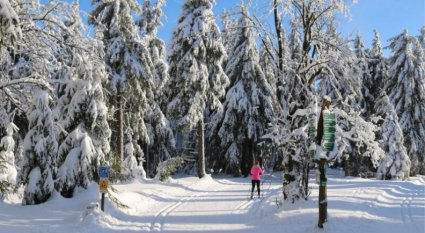 Great Places to Cross Country Ski in the US 2019 GearWeAre