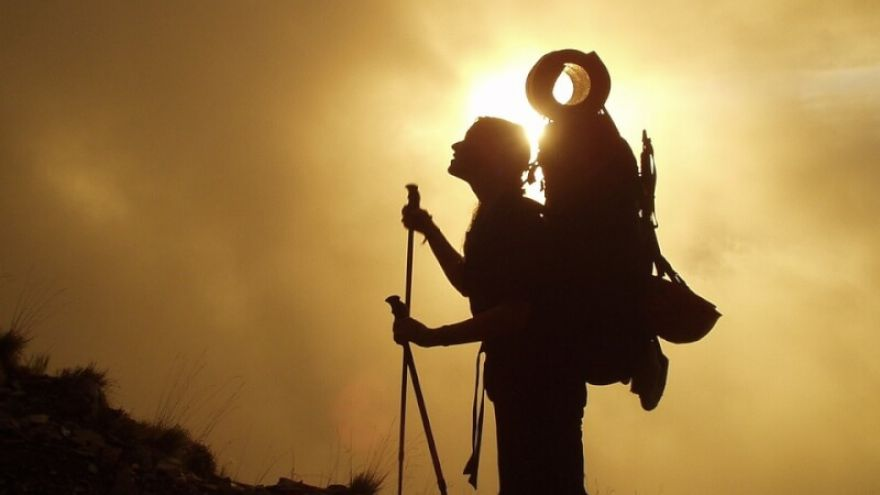 A Beginner's Guide: The Ins and Outs of Trekking Poles GearWeAre