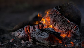 Cooking over coals - by Bryce Watts